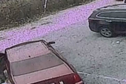 Surveillance video captured a man striking, pulling and abandoning a dog in a Northeast D.C. parking lot earlier this month. (Courtesy Humane Rescue Alliance)
