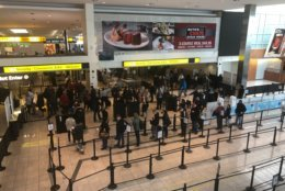 Lines at BWI/Marshall on Sunday. (WTOP/Melissa Howell)