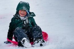 Here's expert sledder Jake... (Courtesy WTOP listener Steve)