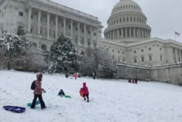 Kids sled on the Hill. (WTOP/Mitchell Miller)