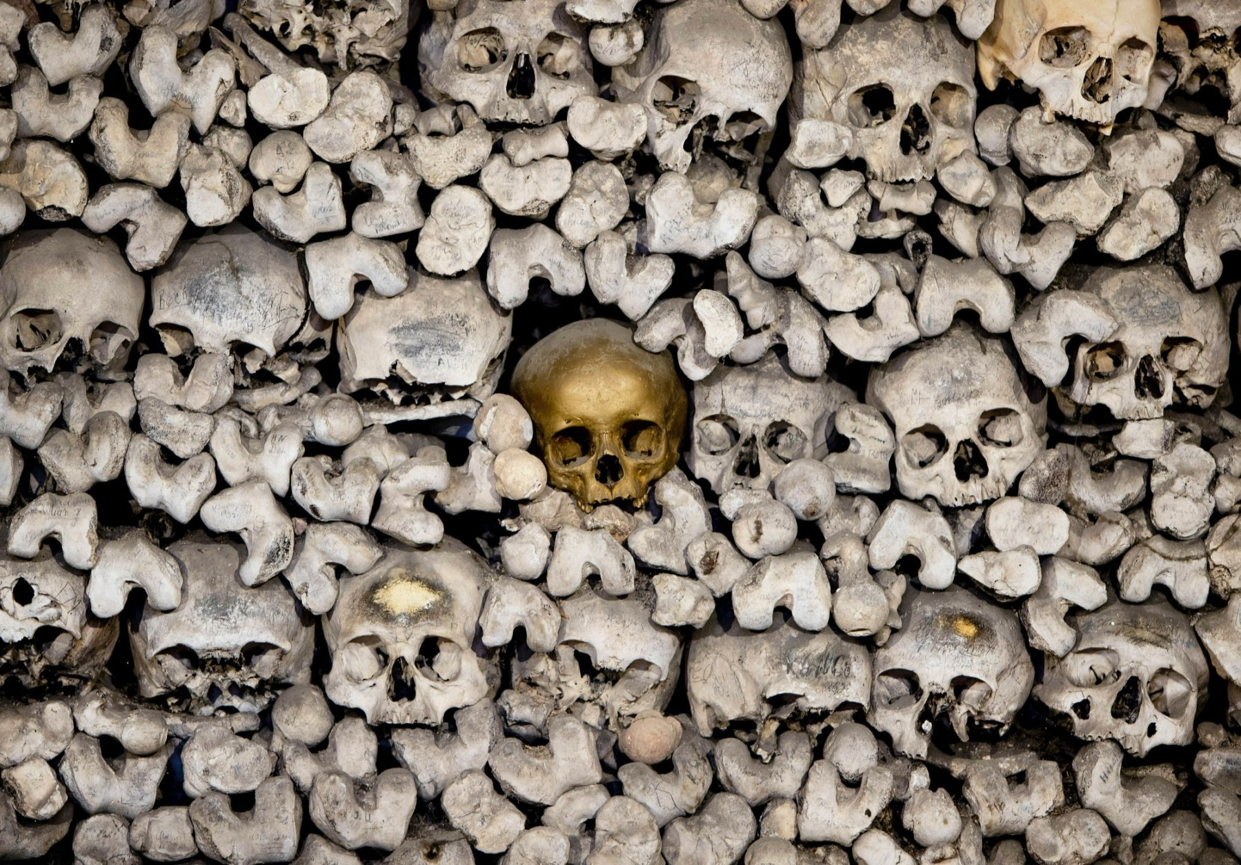 A skull painted gold stands out from amongst the 20,000 skeletons stored in the church ossuary of the Katharinenkirche in Oppenheim some 50 kilometers (30 miles) south of Frankfurt, Germany, Monday, Jan. 7, 2019. (AP Photo/Michael Probst)