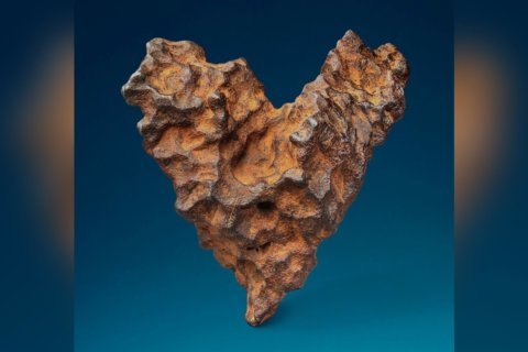 Heart-shaped meteorite up for auction on Valentine's Day