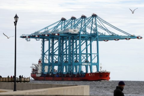 Largest shipping cranes to operate in US arrive at Virginia port