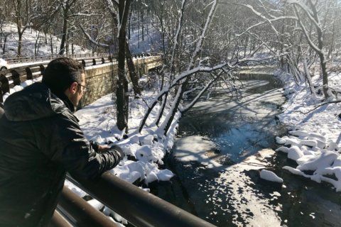 'I remember screaming:' WTOP reporter rescues drowning woman in Rock Creek Park during snowstorm