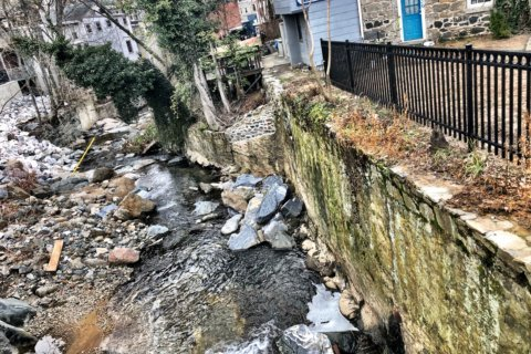 Flood-damaged wall repair project begins in Ellicott City