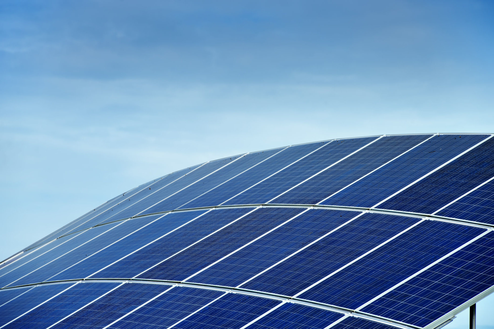 Should 210 Acres Of Trees Be Cut Down To Put Up Solar