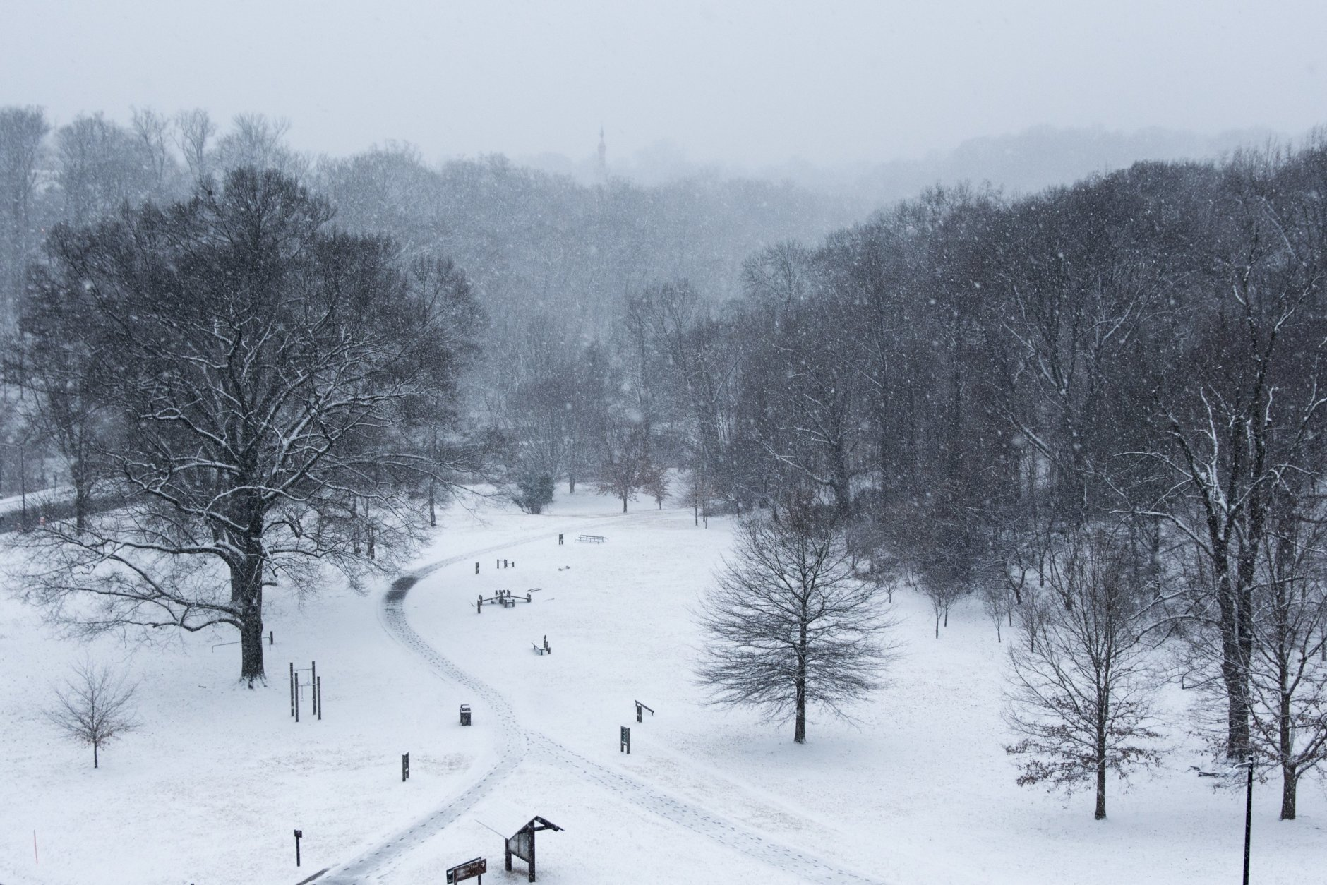 Rock Creek Park seen from the Connecticut Avenue overpass in Woodley Park. Snow was accumulating quickly in the hours after sunrise Wednesday, making for a winter wonderland in D.C.'s largest park. (WTOP/Alejandro Alvarez)