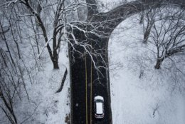 A vehicle passes under snow-covered trees on Beach Drive under the Connecticut Avenue overpass in Woodley Park. Roads on Wednesday morning in northwest D.C. were slushy, but drivable. (WTOP/Alejandro Alvarez)