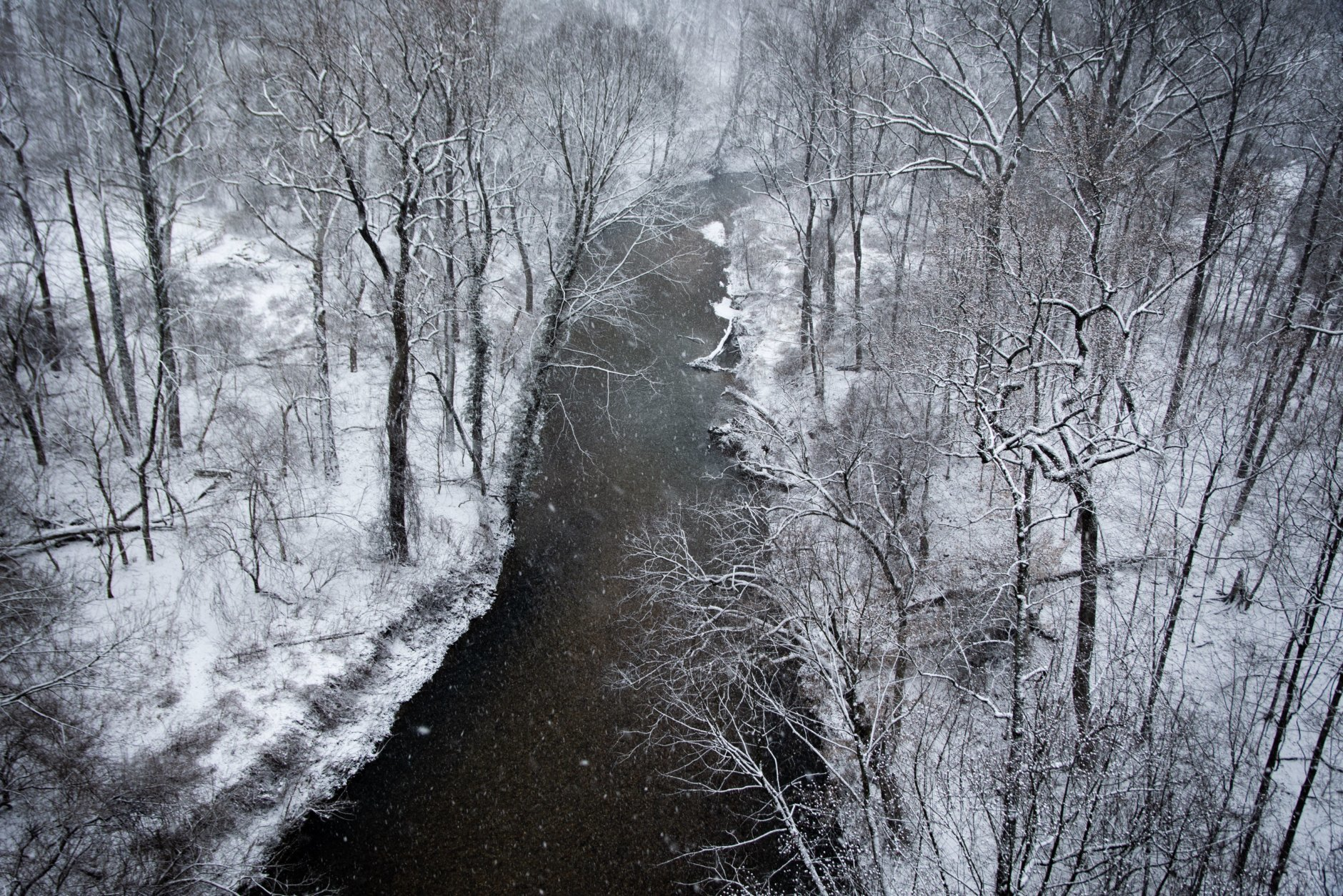 Rock Creek, looking southwest from the Connecticut Avenue overpass just after daybreak on Wednesday morning. (WTOP/Alejandro Alvarez)