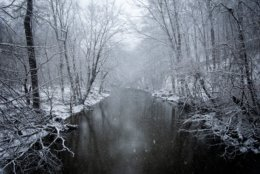 A thoroughly frosted Rock Creek, seen from Beach Drive near Rock Creek Parkway mid-morning Wednesday. (WTOP/Alejandro Alvarez)