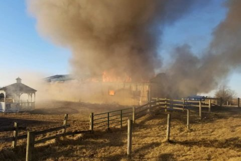 8 horses killed in Frederick Co. barn fire