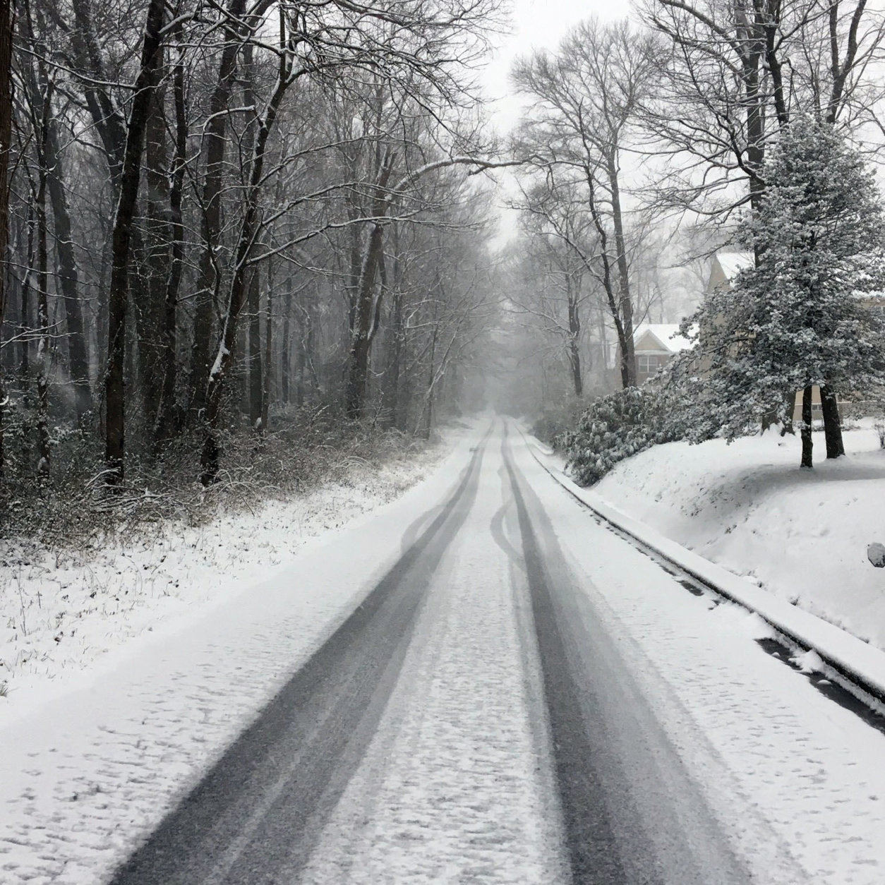 It's eerily quiet on Caverly Ave. in Beltsville, Maryland, on Wednesday morning during the snowstorm. (Courtesy David P. Jesser)