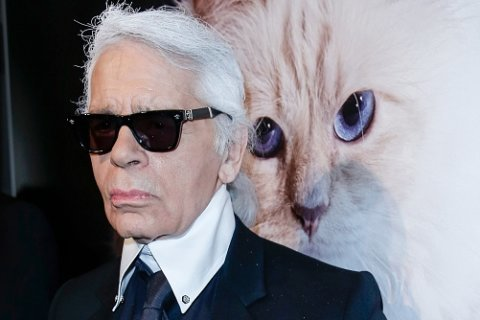 What's next for Karl Lagerfeld's famous cat Choupette?