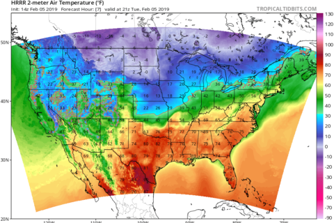 Out with the cold (for now): DC to feel spring-like highs in February