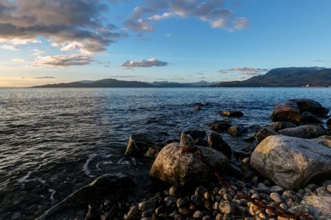 After another human foot washes ashore in Canada, officials ask for help
