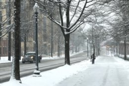 There aren't many people, or cars, on the road in Northwest D.C. Wednesday. (WTOP/Megan Cloherty)