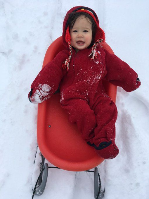 Well, at least someone is enjoying all the snow. (WTOP/Saeko Robinson)