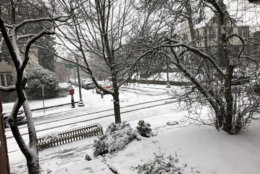 The District's Woodley Park got its fair share of snow Wednesday. (WTOP/Brennan Haselton)