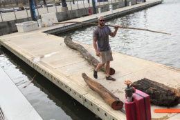 Sizes of wood debris vary greatly, some are more potentially dangerous to boat propellers than others. (WTOP/Kristi King)