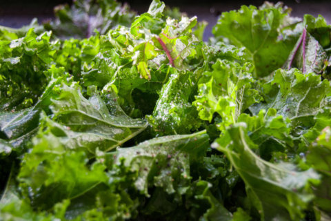 Wake-up kale: Group says trendy green teeming with pesticides