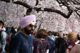 A visitor to the cherry blossom festival is seen on March 30, two days before the peak bloom forecast by the National Park Service. (WTOP/Alejandro Alvarez)