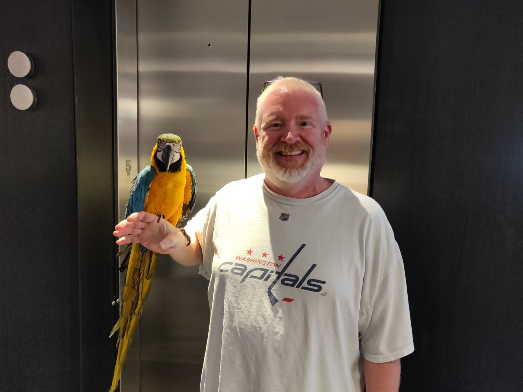 Polly hangs out with WTOP Traffic reporter Jack Taylor at the newsroom. (WTOP/Mike McMearty)