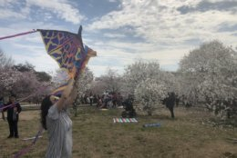 People fly kites near the Washington Monument on March 30, 2019. (WTOP/Melissa Howell)