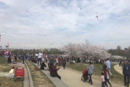 People take advantage of the beautiful spring weather on March 30, 2019. (WTOP/Melissa Howell)