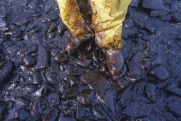 FILE - In this April 11, 1989, file photo, thick crude oil that washed up on the cobble beach of Evans Island sticks to the boots and pants of a local fisherman in Prince William Sound, Alaska. The Exxon Valdez tanker oil spill on March 24 blackened hundreds of miles of coastline. (AP Photo/John Gaps III, File)