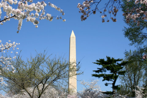 Best places to retire: DC area falls in US News' 2020 rankings
