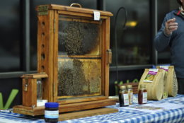 Backyard beekeeping is another environmentally conscious activity that people can do according to MOM's. (Courtesy MOM's Organic Market)