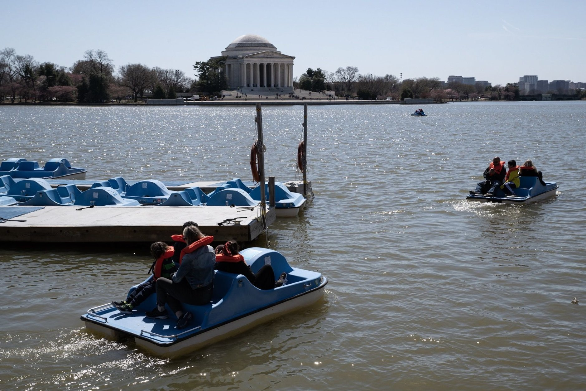 The Cherry Blossom Festival hadn't started its billing yet,  but the paddle boats were already a popular activity for early arrivals to the see the blossoms. (WTOP/Alejandro Alvarez)