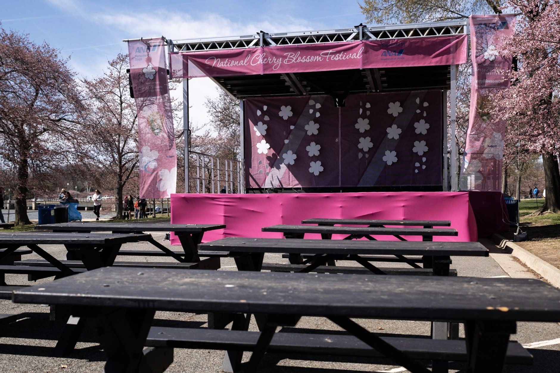 The Cherry Blossom Festival's main stage,. The annual festival features musicians, art exhibitions and parades for weeks in late March through early April. (WTOP/Alejandro Alvarez)