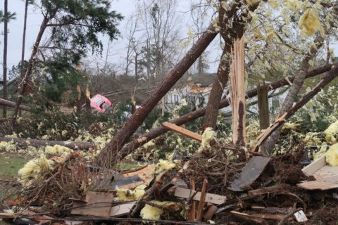 Here's how you can help the Alabama tornado victims