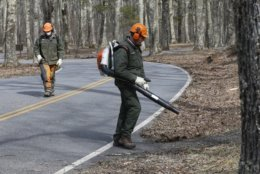 National Park Service employees operate machinery as they clear debris on roadways and walkways from winter storms at the Lewis Mountain campground in the Shenandoah National Park in Luray, Va., Wednesday, March 20, 2019. (AP Photo/Steve Helber)
