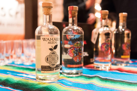 Two-week festival celebrates tequila, mezcal