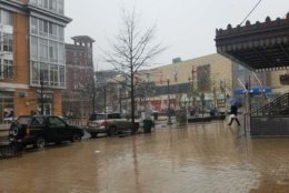 Snow falls but doesn't stick in Columbia Heights, D.C. (WTOP/Will Vitka)