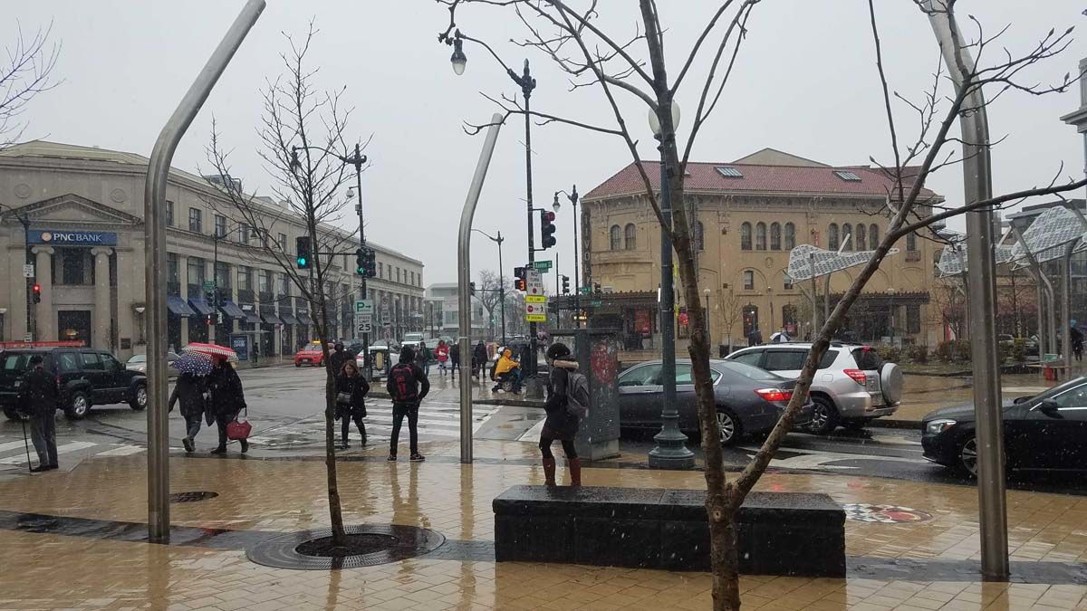 Snow falls in Columbia Heights, D.C. (WTOP/Will Vitka)