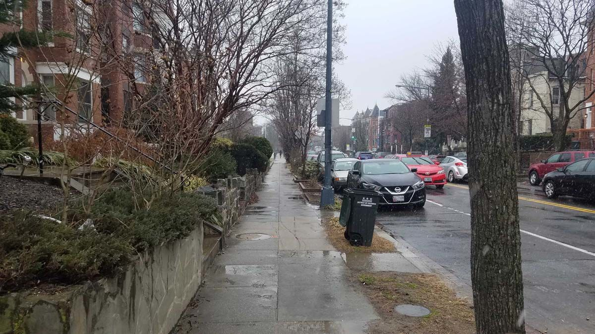 Snow falls on wet roads in Columbia Heights in Northwest D.C. (WTOP/Will Vitka)