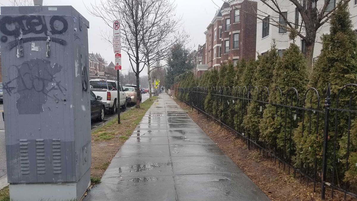 Puddles form on wet sidewalks in Columbia Heights, D.C. (WTOP/Will Vitka)