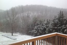 Snow falls near Front Royal, Virginia, on Friday, March 8, 2019. (WTOP/Mike Stinneford)