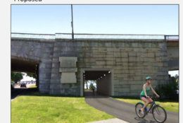 The Park Service proposal calls for a tunnel through the Theodore Roosevelt Bridge. (Courtesy National Pak Service)