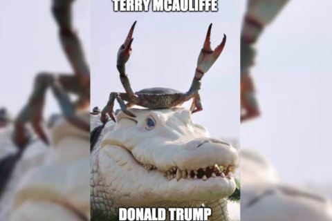 What does it meme? Ex-Va. Gov. McAuliffe tweets head-scratcher