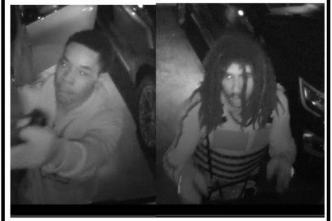 Pair sought in thefts from vehicles around Va. neighborhood (photos)