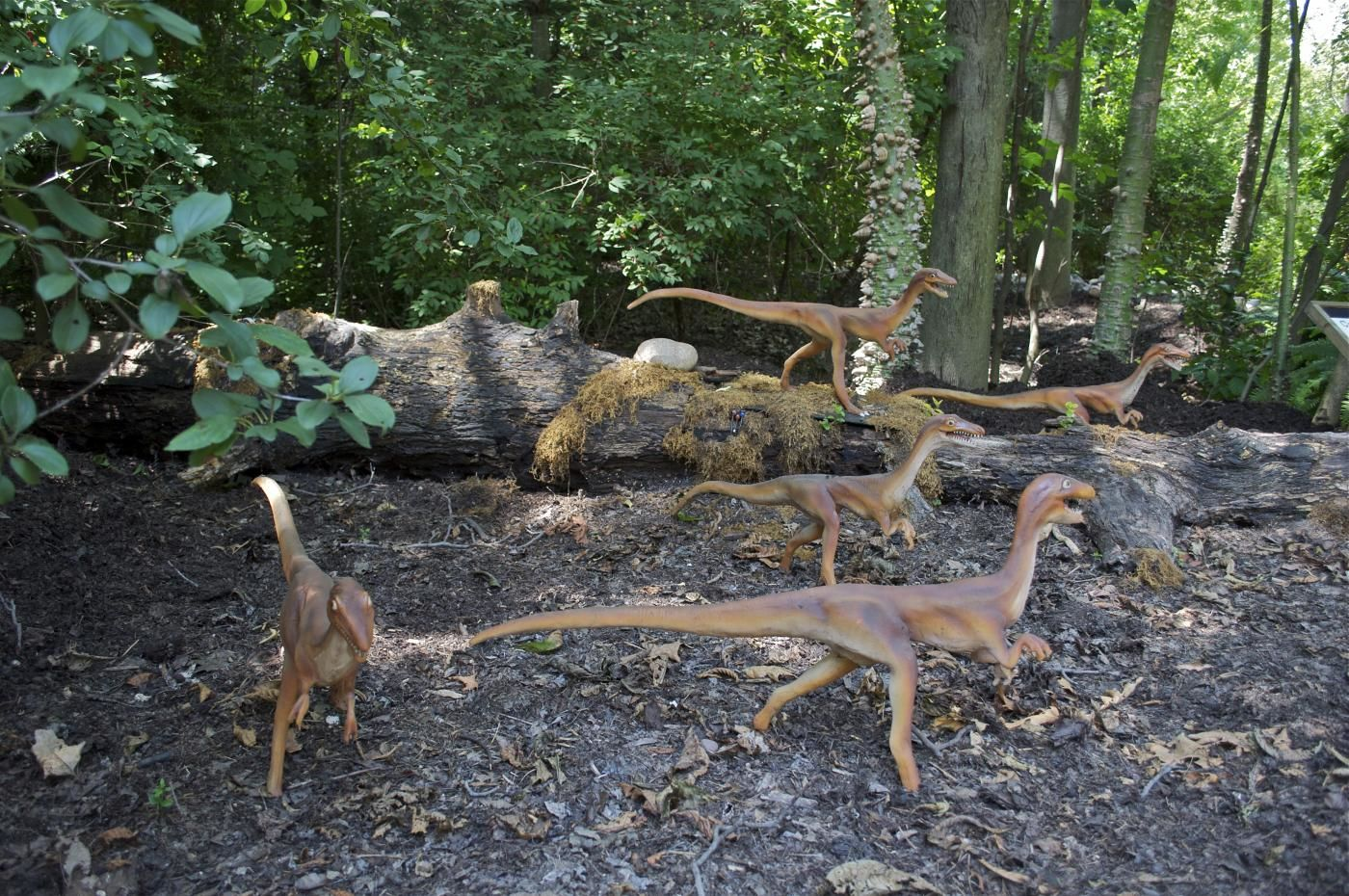 The zoo will feature life-size animatronic replicas of various dinos. (Courtesy National Zoo)