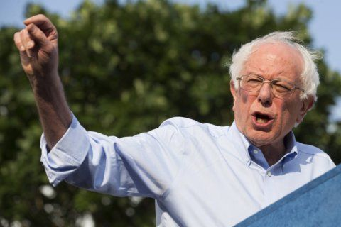 Who's running for president? Meet the Democratic candidates