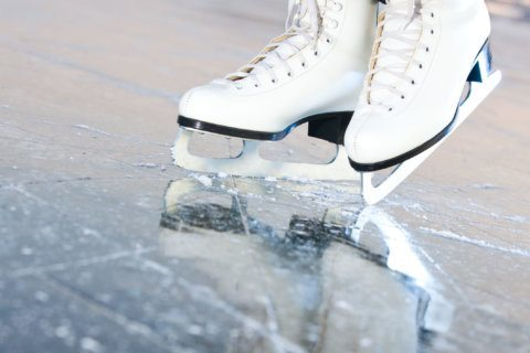 Alexandria park to transition to winter wonderland with ice rink installation