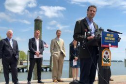 US Rep John Sarbanes addresses the crowd at the Earth Day event in Annapolis. (WTOP/Kate Ryan)