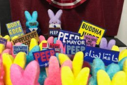 A recent Peeps diorama Martin made featuring Pete Buttigieg was retweeted by the presidential hopeful. (WTOP/Rachel Nania)
