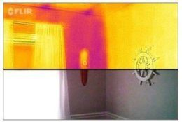 """The devices provide """"visual heat maps for hot and cold spots, right on your phone,"""" said Lindsey Shaw, manager of energy and sustainability programs for the Montgomery County Department of Environmental Protection. (Courtesy MyGreenMontgomery/Jessica Lavender)"""